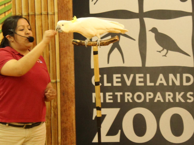 Zoo Program 2016